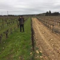 Au bonheur du vin dans le Bordelais !